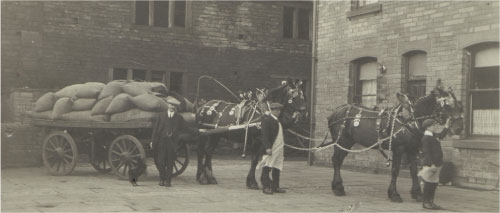 Horse and cart in yard -Wyke Lane Works early 20th century.